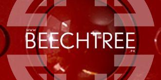 Beech Tree logo