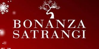Bonanza Satrangi logo