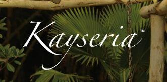 Kayseria logo